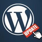 Wyłączenie komunikatów aktualizacji i ograniczenia w panelu WordPress